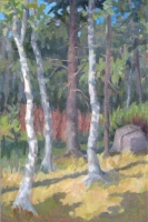 Birches, oil on panel, 18 x 12 in.